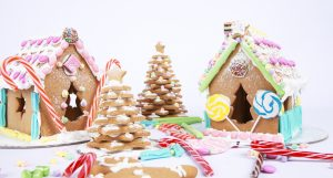 Gingerbread_house_fun-example_lr_0022