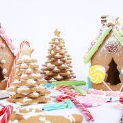 gingerbread_house_fun-example_lr_0022