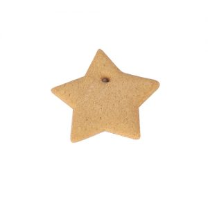 gingerbread_products-flat_star_large_500px