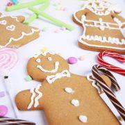 gingerbread_house_fun-example_lr_0006